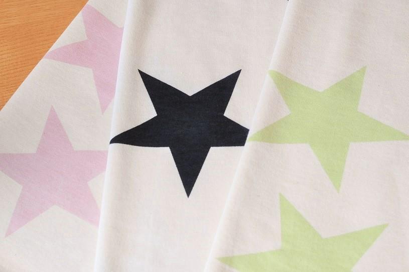 画像1: 40/20ミニ裏毛 big star (カート戻)